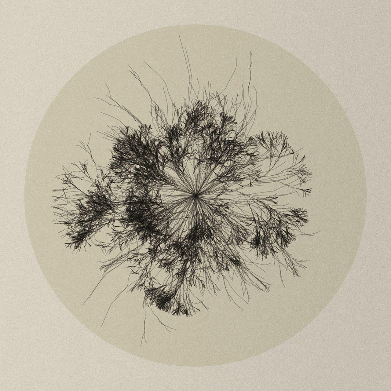 """Bereits der Titel """"Nature of Code"""" verrät viel über den Inhalt des Projektes: """"Nature"""" bedarf eigentlich keine Erklärung; es geht offensichtlich um Pflanzen, Tiere oder Ähnliches. """"Code"""" weist darauf hin, dass das Ganze etwas mit Programmierung zu tun hat. Darüber hinaus gibt es bereits ein gleichnamiges Projekt von Daniel Shiffman, welches eine Sammlung von Programmier-Tutorials ist. Enthalten sind die Schwerpunte Algorithmen, Trigonometrie, Fraktale und Rekursion, Physik und anderen…"""