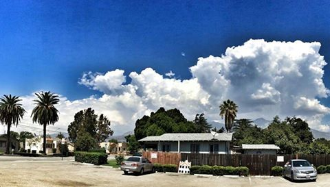 Our strange weather! #altalomaanimalhospital #weirdweather #summerstorm