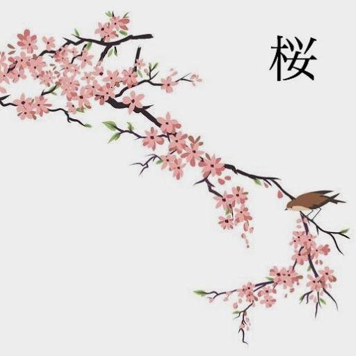 Japanese Cherry Blossom Quotes Quotesgram Cherry Blossom Drawing Anime Cherry Blossom Tree Drawing