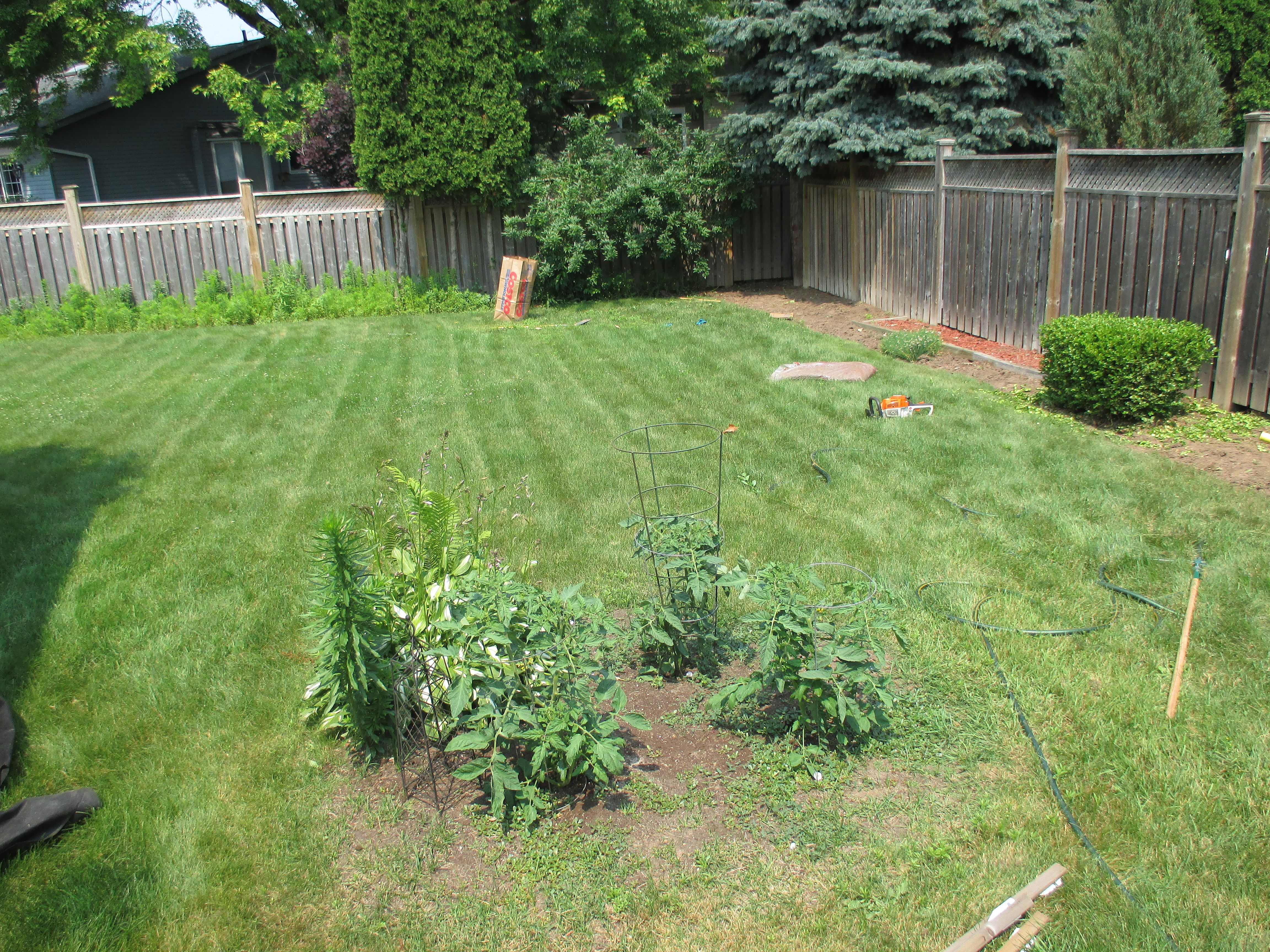 Gardens In Need Of Weeding And Mulch