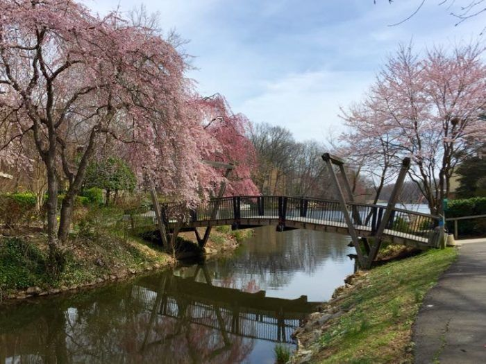11 Places In Virginia You Need To Visit This Spring