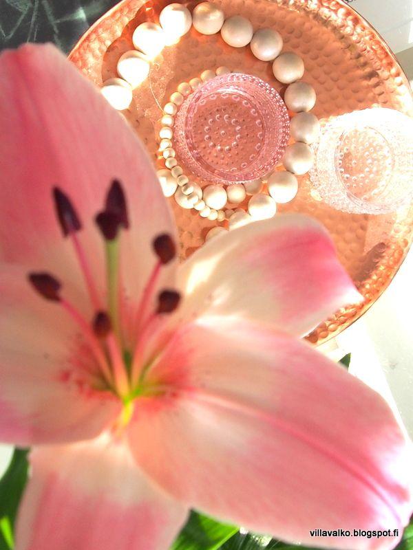 Villa Valko: Kukka broste, copper, lily, pink, iittala, kastehelmi