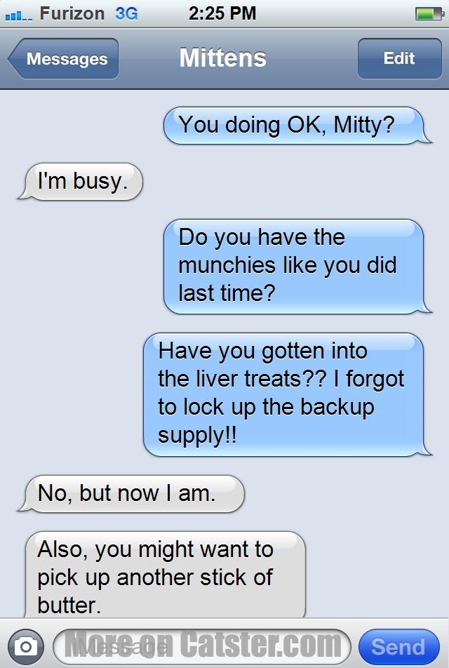 Texts From Mittens: The Valentine's Day Edition