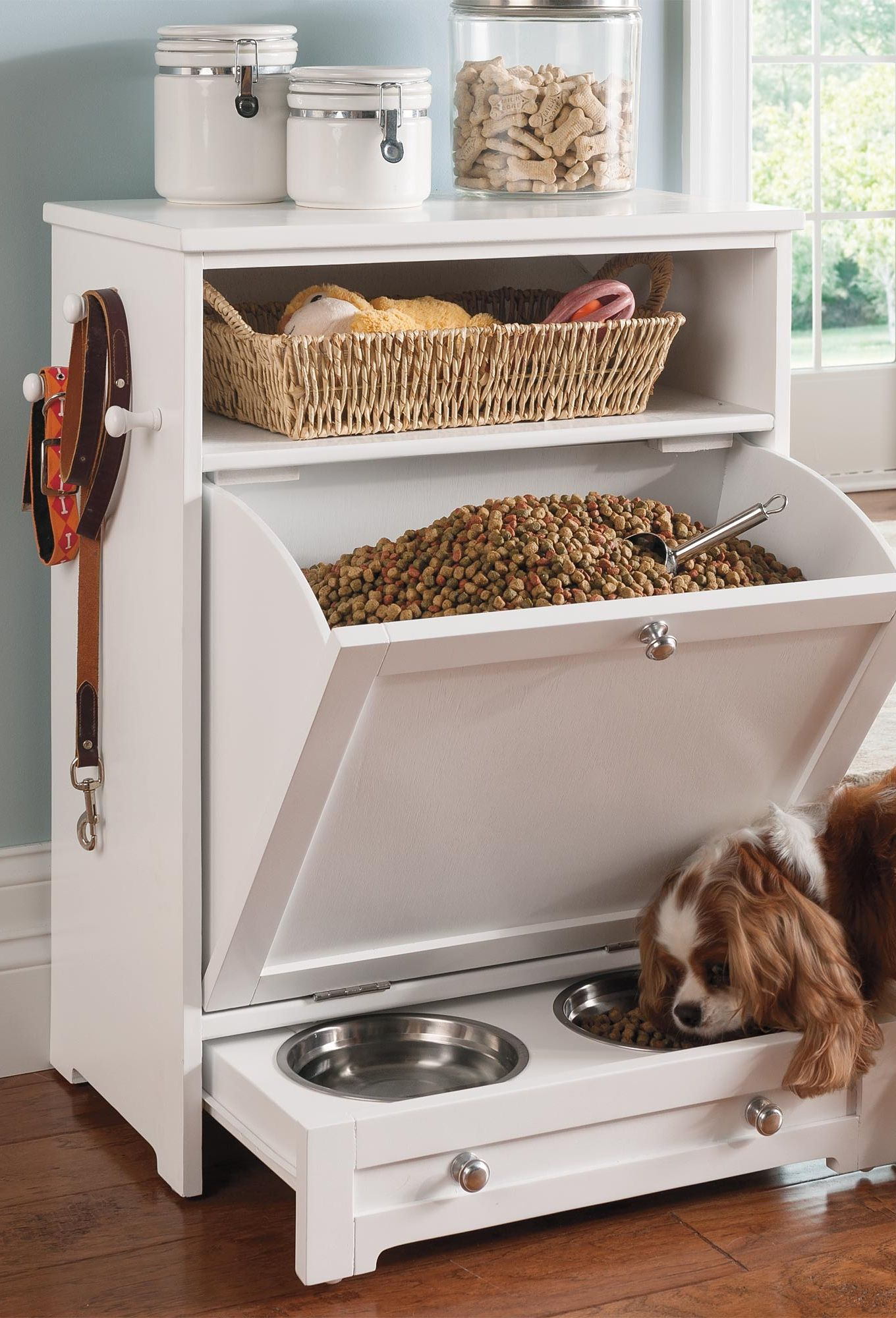 Food dog stylish storage recommendations dress in winter in 2019