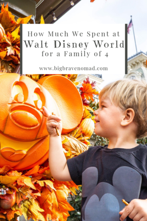 How Much Does Disney World Cost For A Family Of Four Big Brave Nomad Disney World Disney World Trip Walt Disney World Vacations
