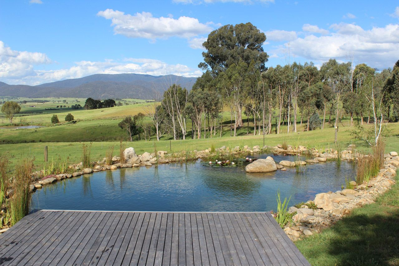 Our Projects Natural Swimming Pools Australia Natural