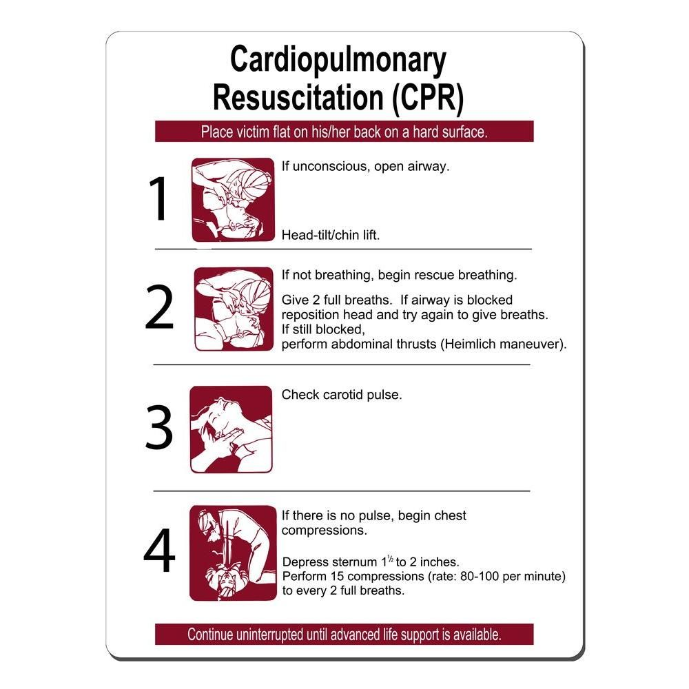 16 in x 21 in cpr instructions sign printed on more durable cpr instructions sign printed on more durable thicker longer lasting styrene plastic burgundy on white 1betcityfo Images