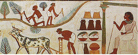 ancient egyptian farming tools - Google Search | African grey ...