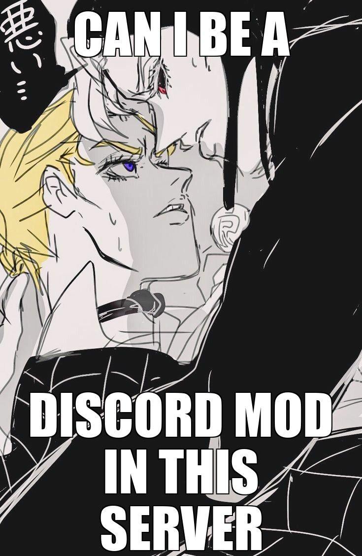Please Stupid Memes Funny Memes Jojo Memes