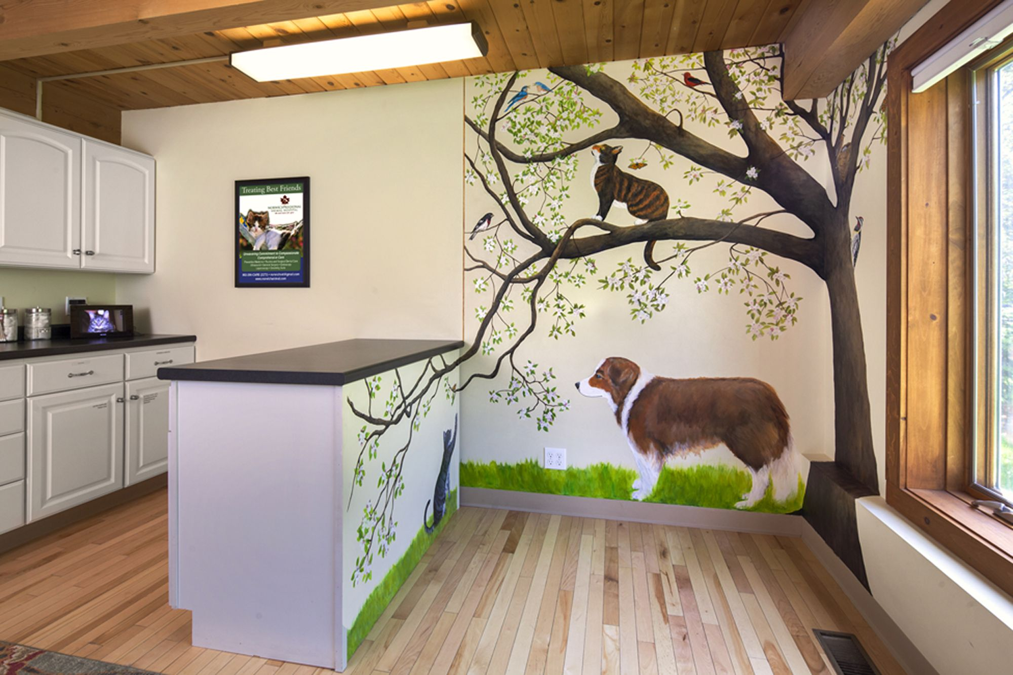 Mural Created For The Norwich Regional Animal Hospital Wilder Vt Animal Mural Animal Hospital Decor