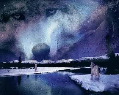 Un Hombre Lobo Americano En Paris En 2020 Lobo Americano Carteles De Cine Hombres Lobo