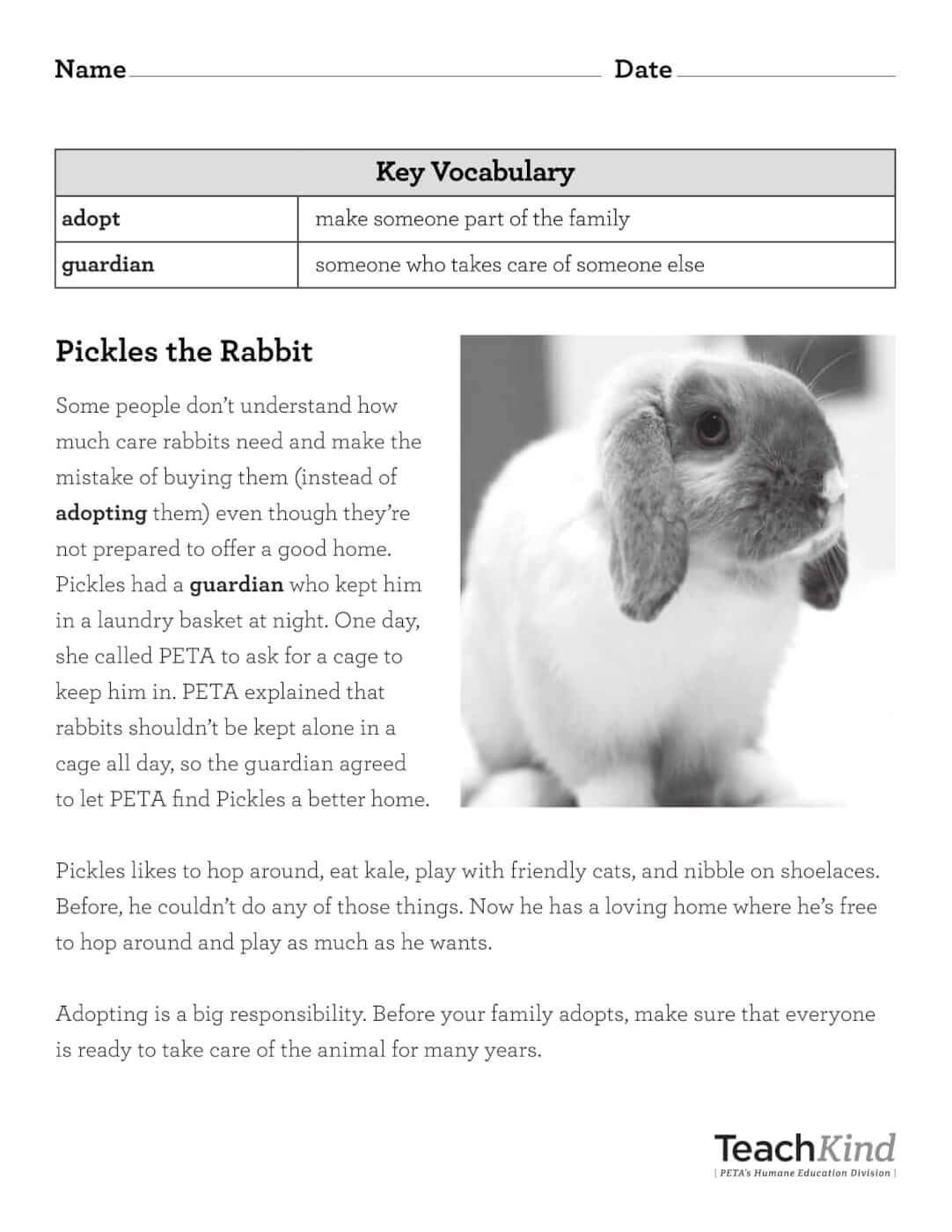 Teachkind Rescue Stories Pickles The Rabbit Comprehension Worksheets Reading Comprehension Worksheets Classroom Pets [ 1400 x 1082 Pixel ]