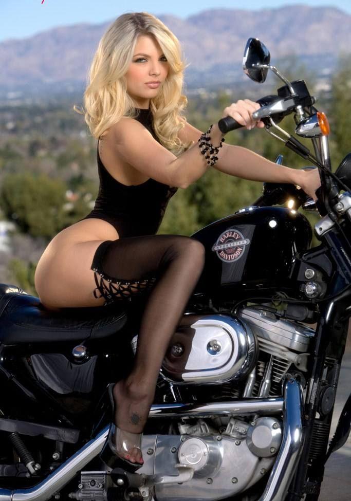 Hot Babe On A Harley Davidson Sexy Hot Blonde Bike Motorcycle Girls