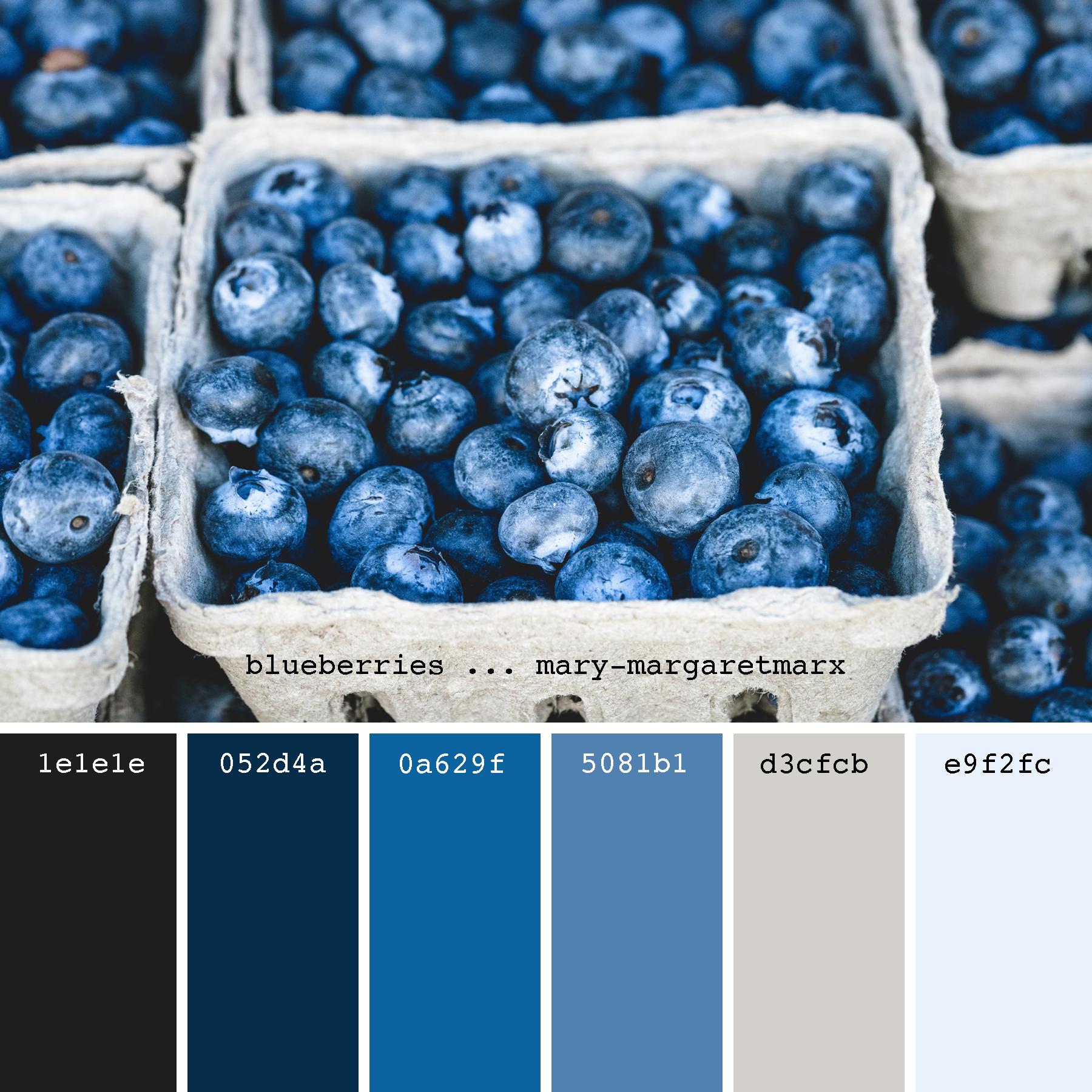 6 4 Different Black White Slate Blue Berry Tan Cream Neutral Slate