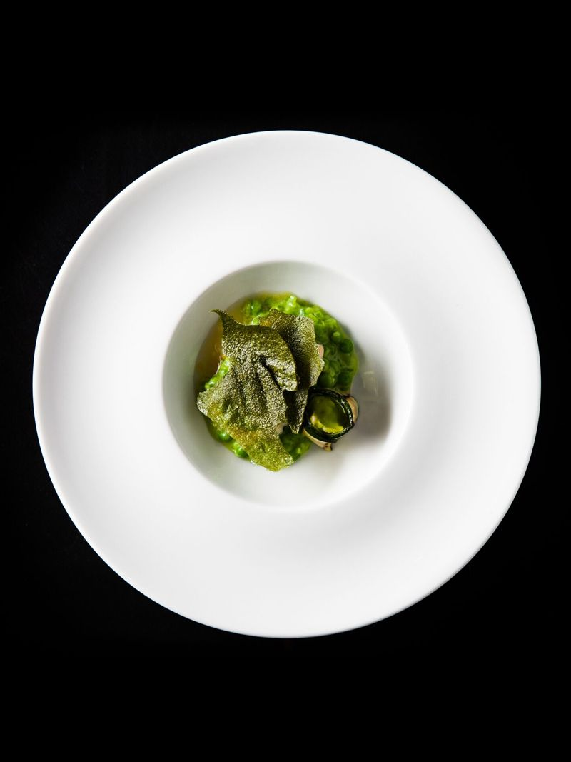 Halibut, candied lemon gelée, snap pea risotto, grilled zucchini, smoked branzino salad, tarragon oil, and tarragon chicharron by Craig Thornton. Photo Courtesy of The Museum of Contemporary Art, Los Angeles. Photo by Myles Pettengill.