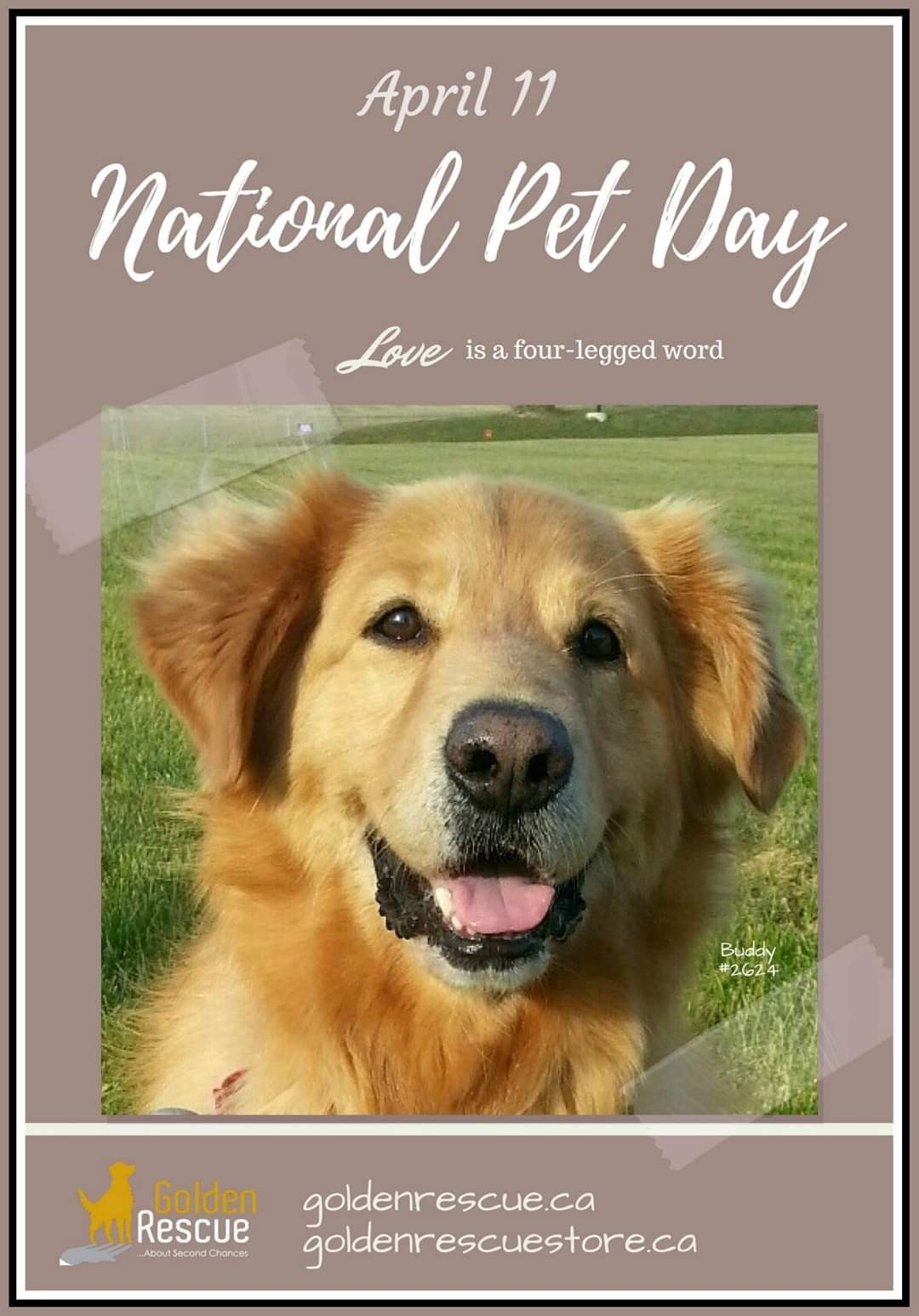 April 11 is National Pet Day. While loving our pets is