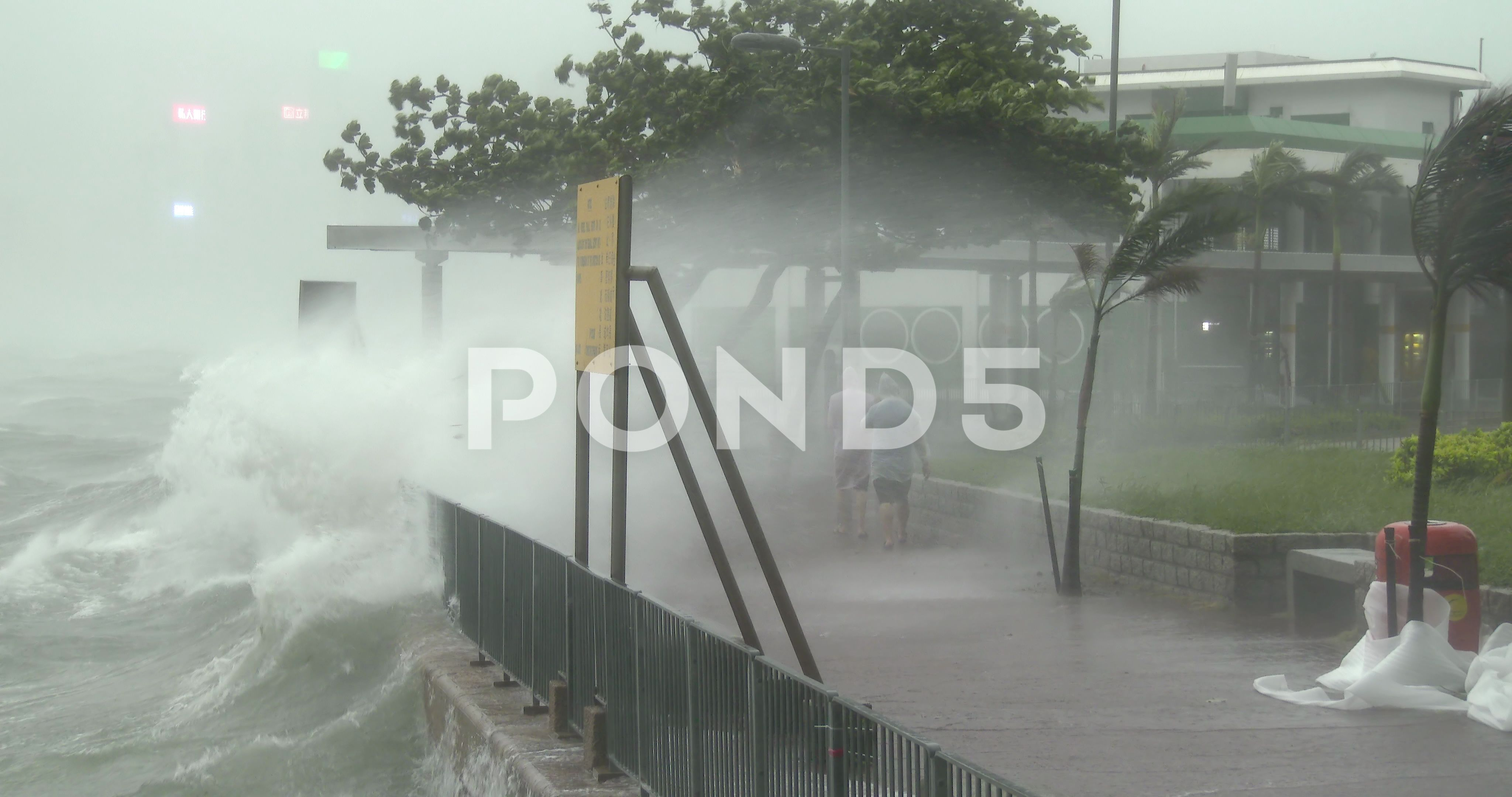 People Soaked By Sea Spray As Hurricane Winds Hit City Stock Footage Ad Spray Hurricane People Sea In 2020 Hurricane Winds Sea Spray Hurricane