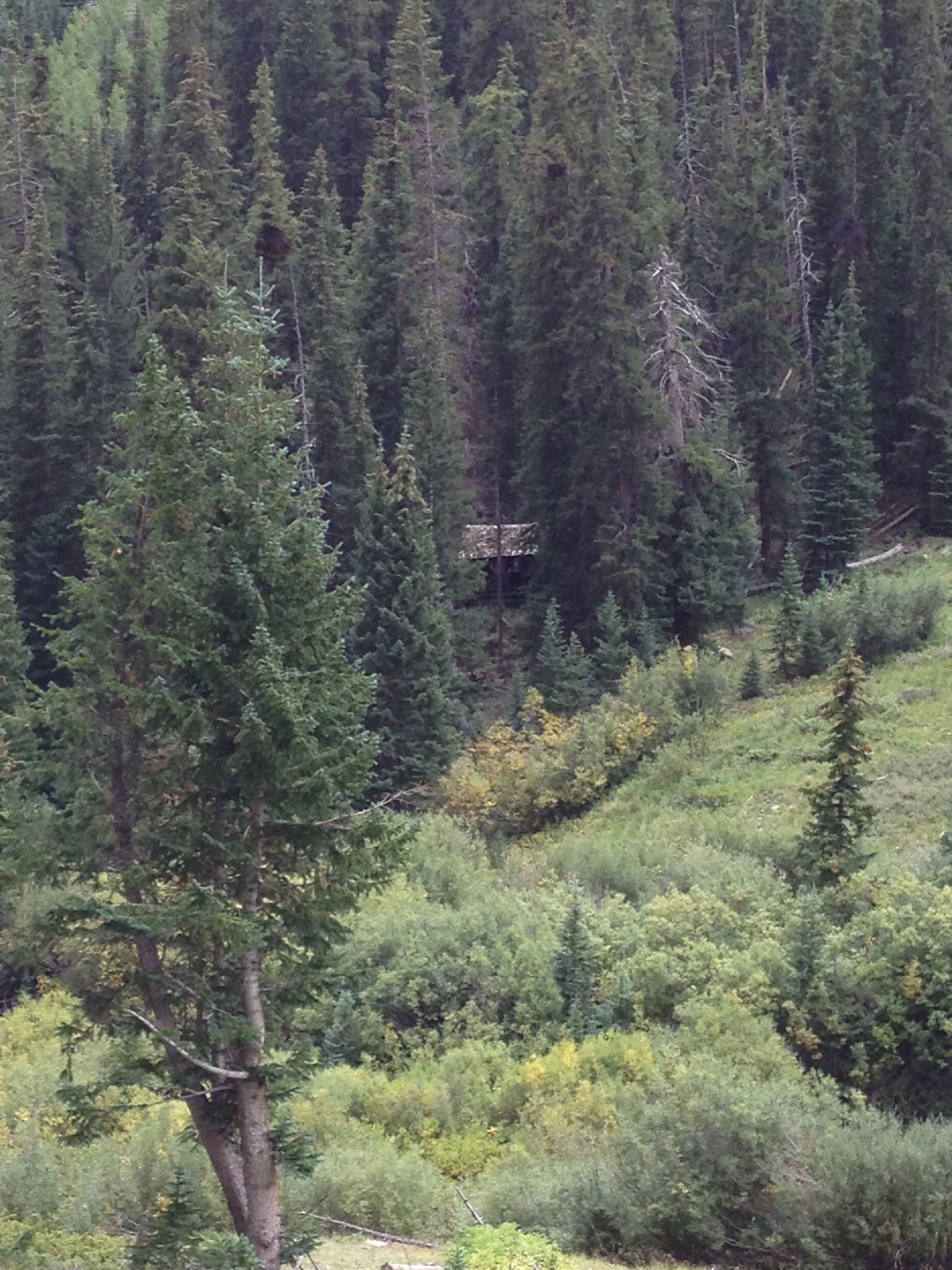 Someone's mining home in the late 1800's. still standing in the tree covered mountainside, Alpine Loop, Colorado.