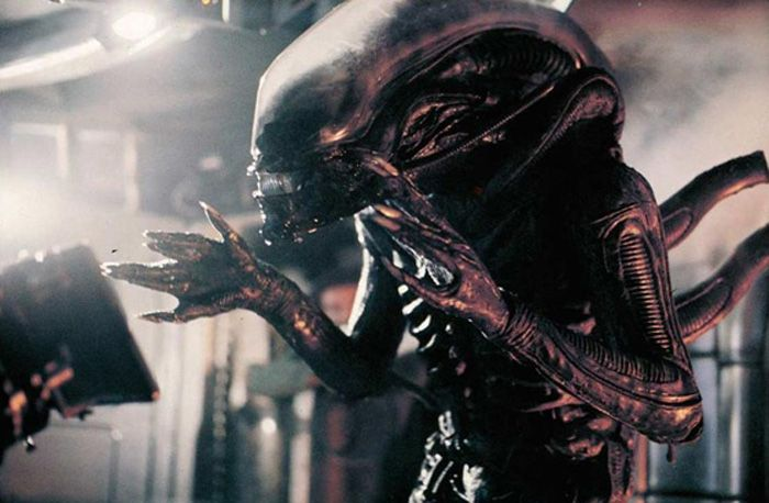 Image result for alien xenomorph 1979