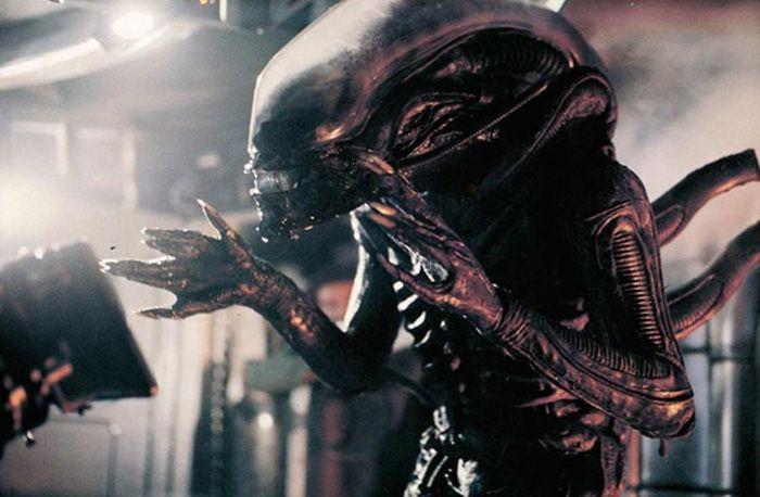 Image result for alien xenomorph 1979