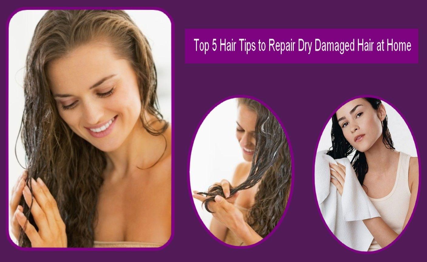 Top 5 Hair Tips to Repair Dry Damaged Hair at Home Dry