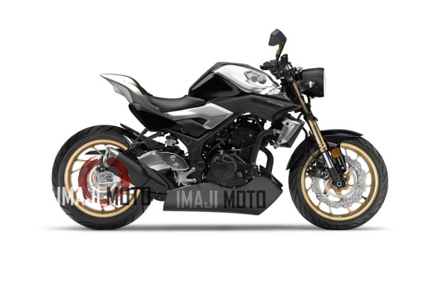 Modifikasi Yamaha Mt 25 Ala Street Fighter The Real Fighter Concept