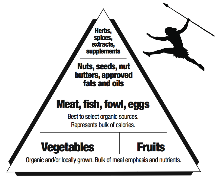 How To Succeed With The Primal Blueprint Mark S Daily Apple Paleo Food Pyramid Paleo Diet Meal Plan Paleo Diet Recipes