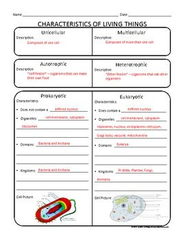 Worksheets Prokaryotes Vs Eukaryotes Worksheet lets learn classifying living things organizer free to help with unicellular vs multicellular