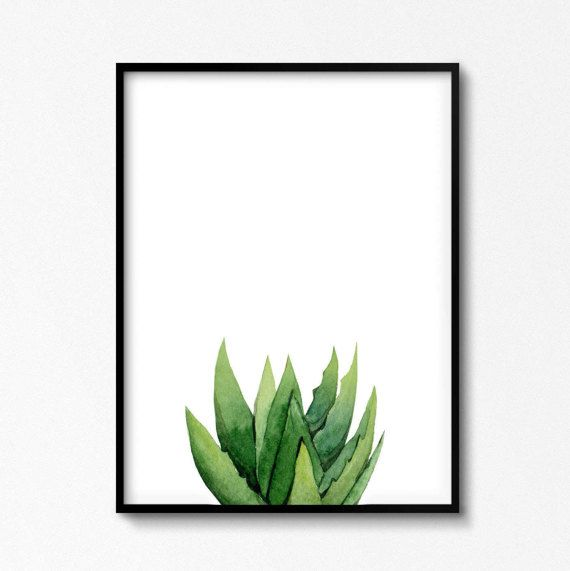 Aloe Plant Art, Sukkulente Malerei, Botanische Illustration, südwestliches Interieur, Leaves Kitchen Poster, Green Home Print, Cozy Room Decor