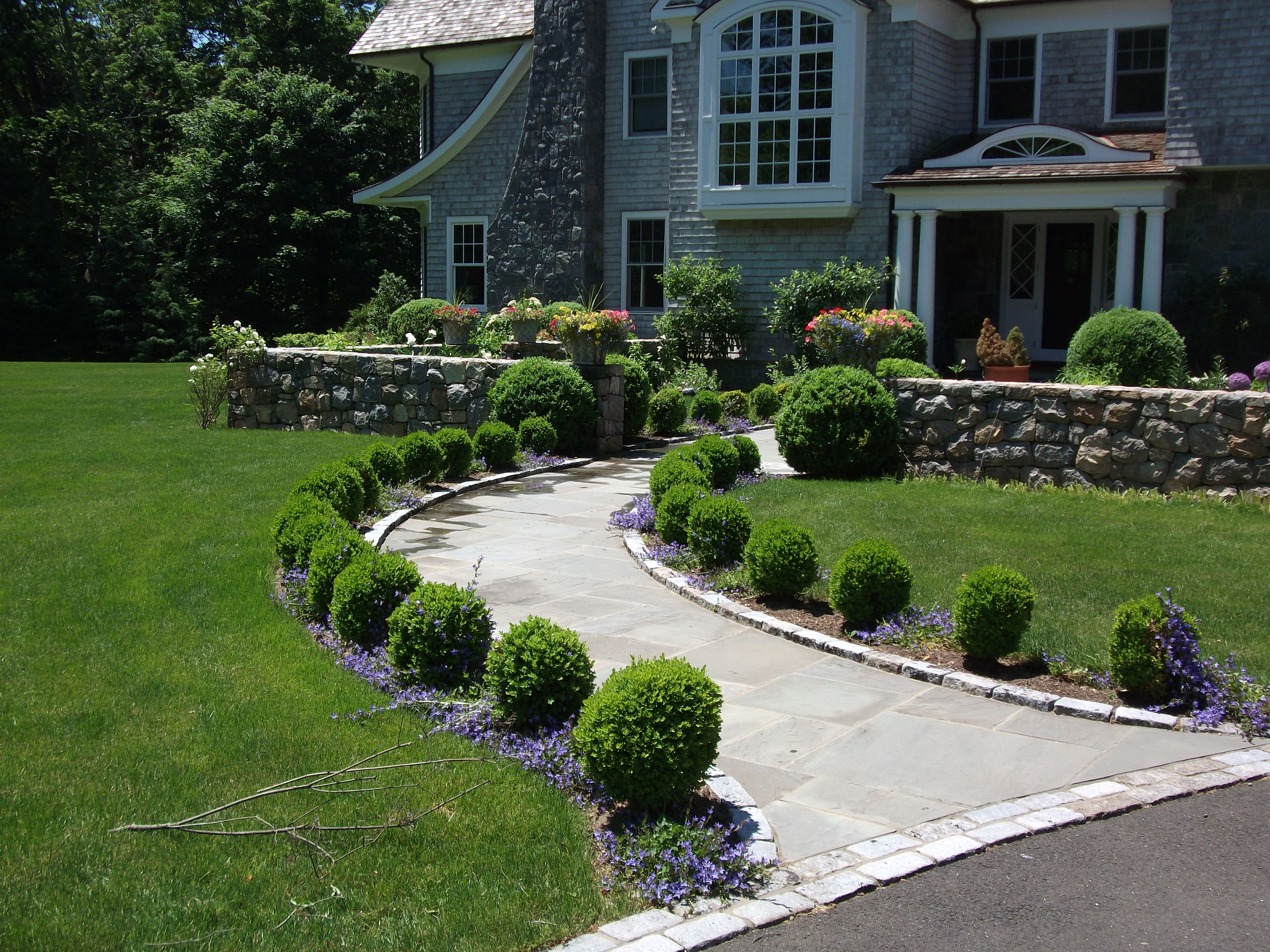 Boxwood Lined Front Walkway Ideas Google Search Front