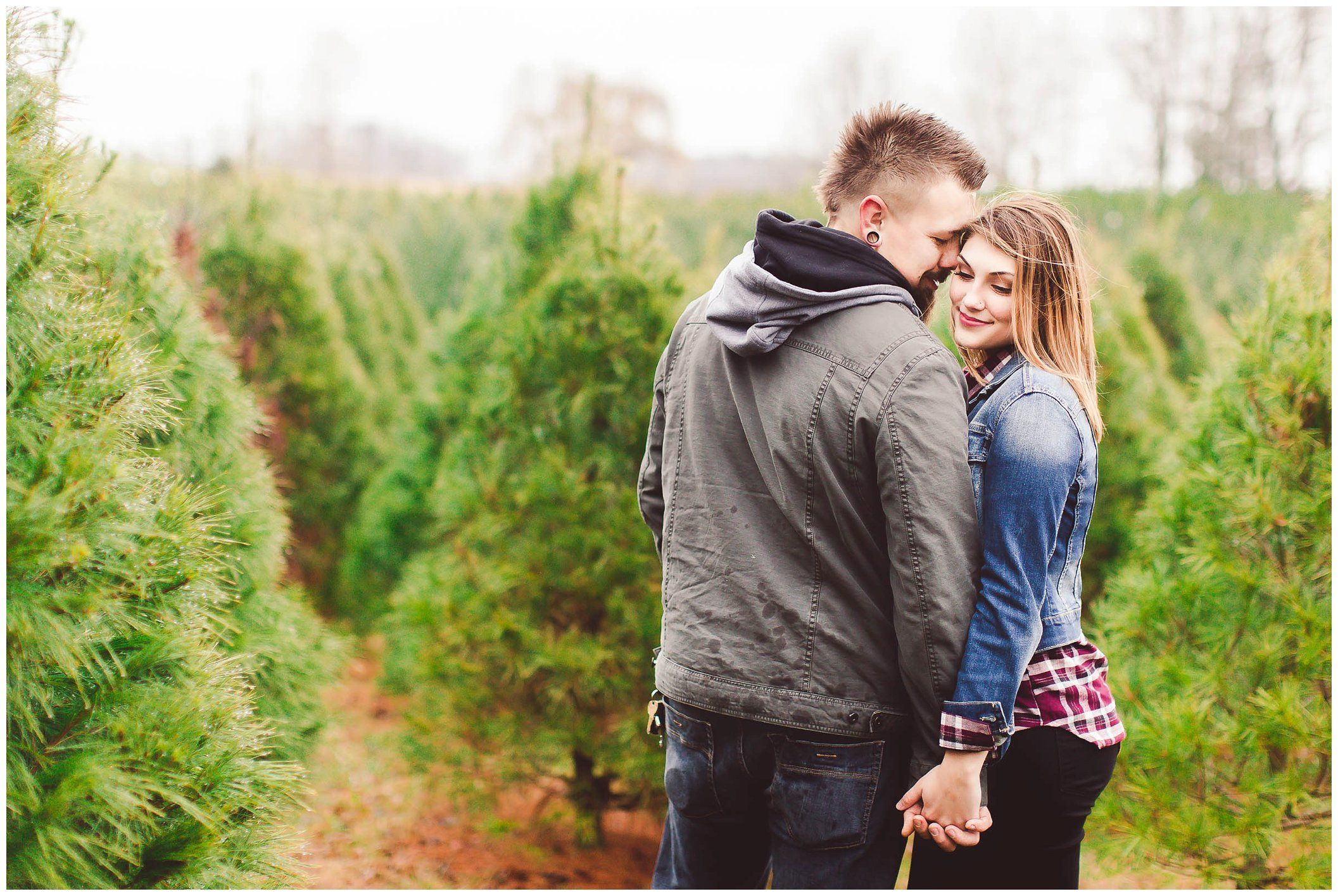 Victoria Ian Dull S Tree Farm Tree Farms Christmas Photo Cards Christmas Tree Farm