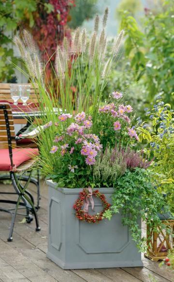 Ideen f r eine herbstlich gestaltete terrasse balkon for Topfpflanzen winterhart