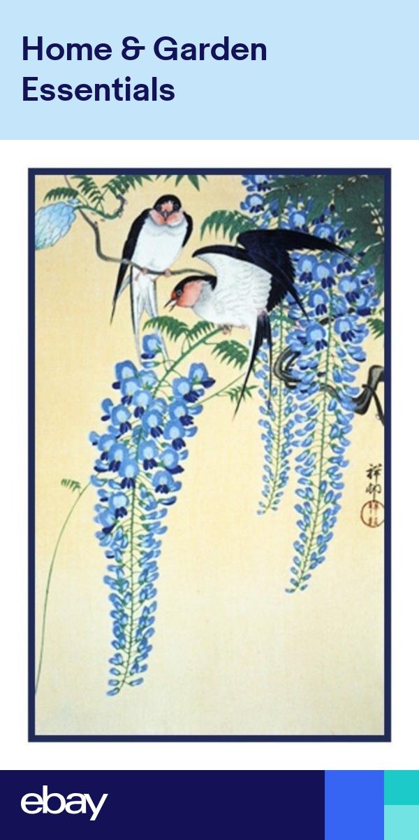 Japanese Ohara Shoson Koson Wisteria Swallows Bird Counted Cross Stitch Pattern