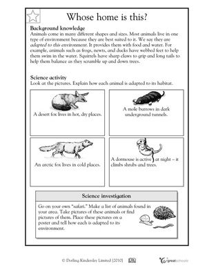Worksheets And Activities To Keep Kids Busy And Sharp Over