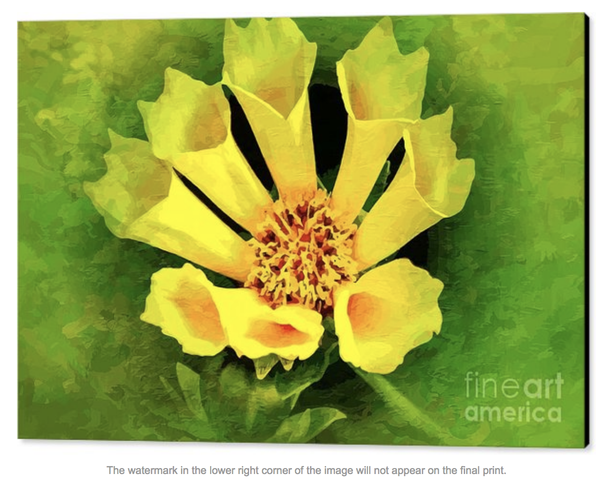 A Fusion Of Yellow And Green Canvas Print Canvas Art By Clive Littin