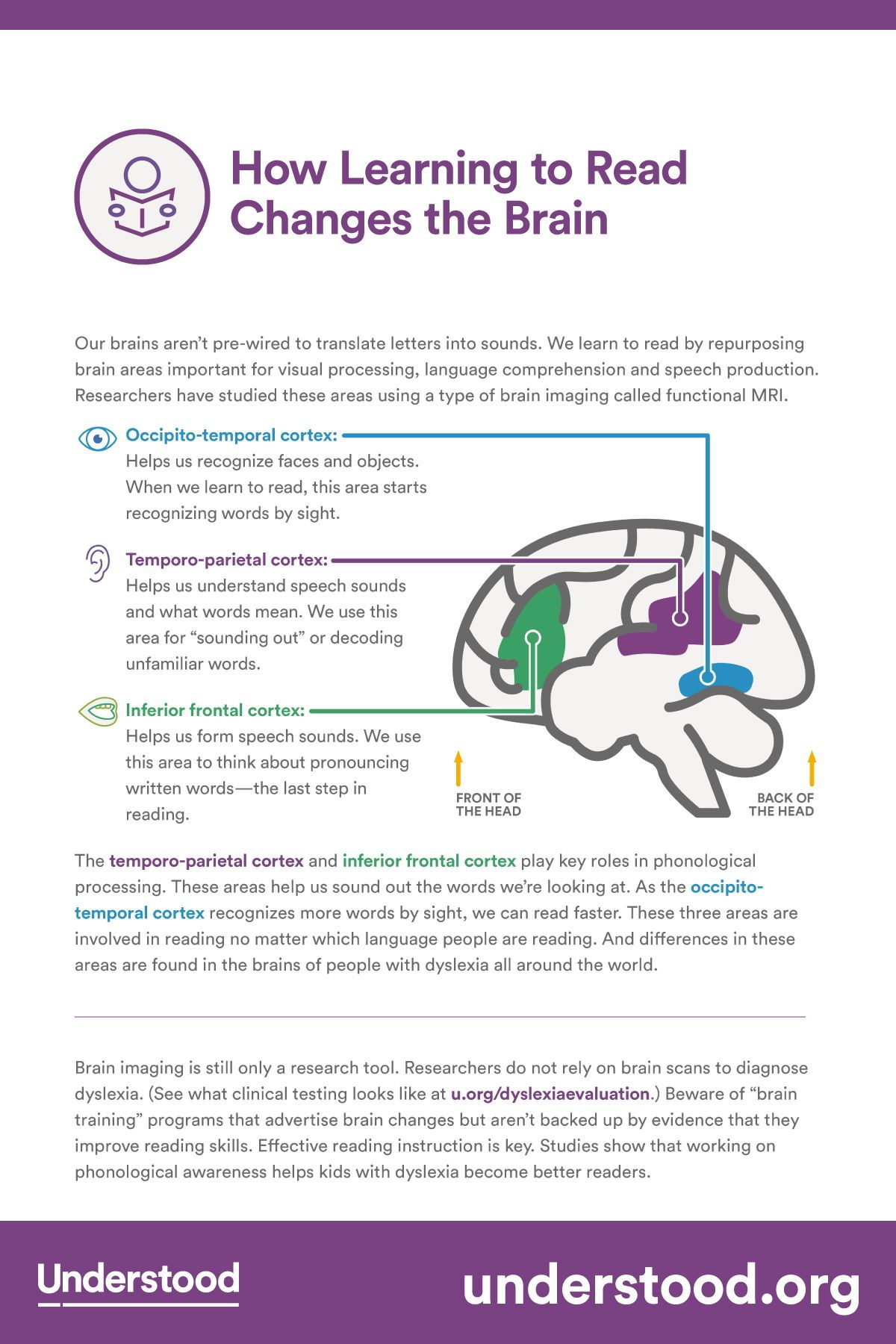 At A Glance How Reading Changes The Brain Understanding Your