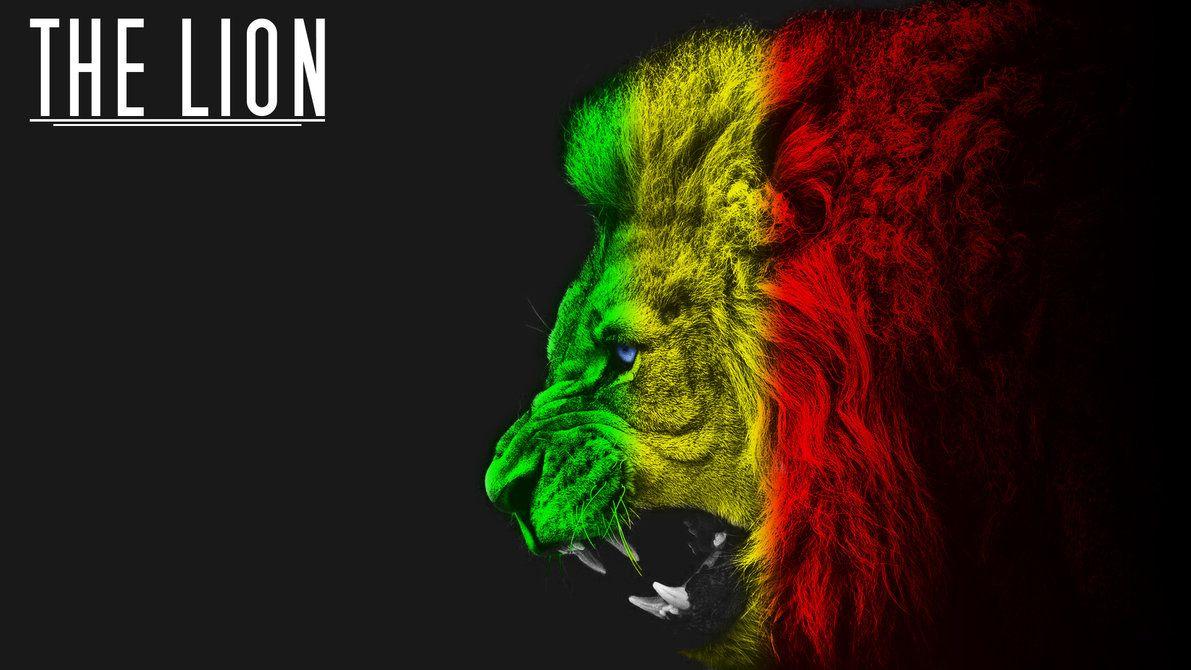 Rasta Lion Hd Wallpaper undefined Rasta Lion W...