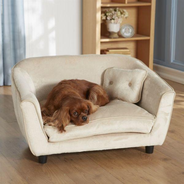 Weißes Sofa schöne ideen für ihren hund sofa hundeaccessoires hundebett