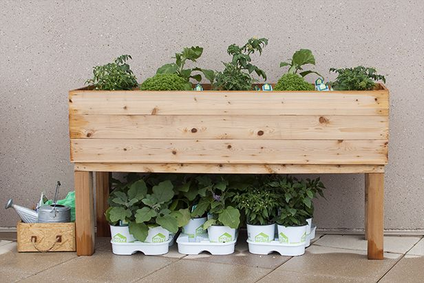 How To Build An Elevated Wooden Planter Box Raised Wooden Planters Diy Wooden Planters Garden Planter Boxes