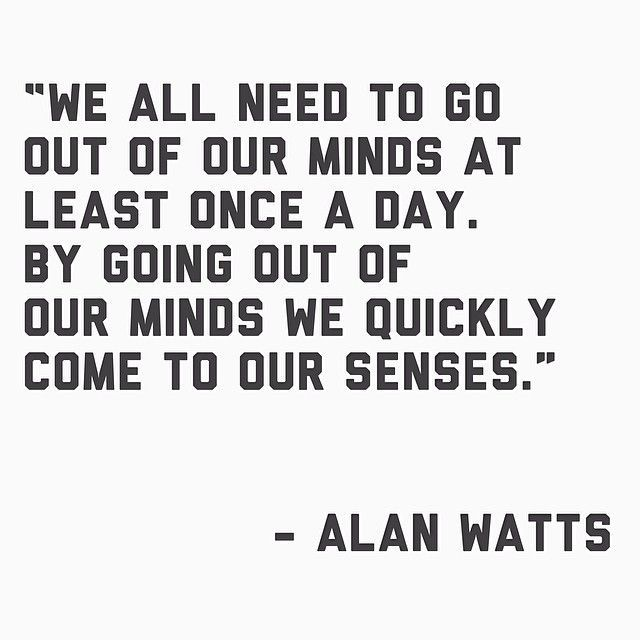 Twitter Alan Watts Quotes Words Spiritual Quotes