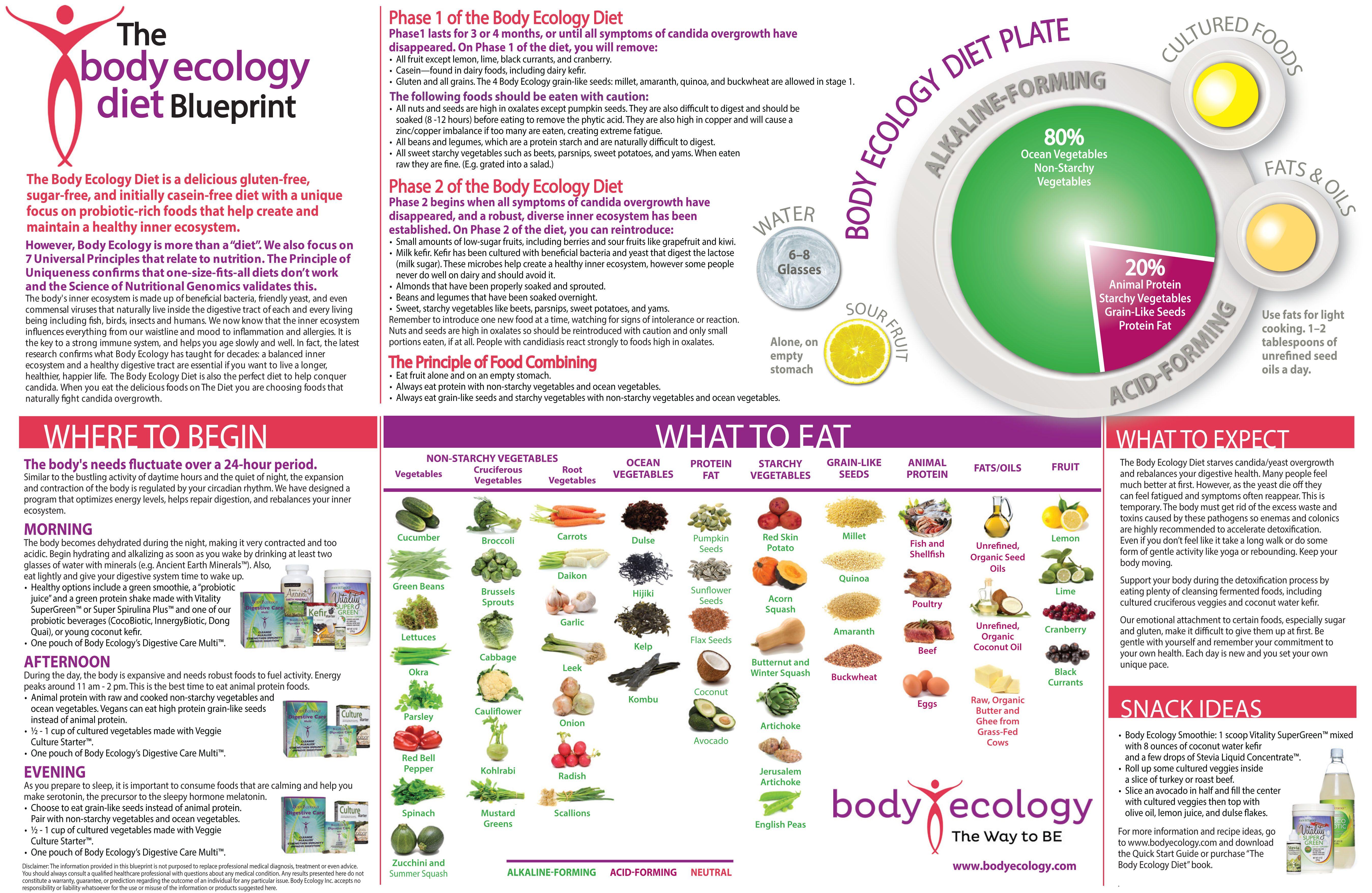 Body ecology blueprint body ecology pinterest ecology