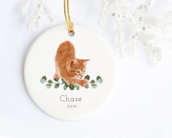 Pet Christmas Ornament Orange Ginger Kitten #gingerkitten Pet Christmas Ornament Orange Ginger Kitten #gingerkitten Pet Christmas Ornament Orange Ginger Kitten #gingerkitten Pet Christmas Ornament Orange Ginger Kitten #gingerkitten Pet Christmas Ornament Orange Ginger Kitten #gingerkitten Pet Christmas Ornament Orange Ginger Kitten #gingerkitten Pet Christmas Ornament Orange Ginger Kitten #gingerkitten Pet Christmas Ornament Orange Ginger Kitten #gingerkitten