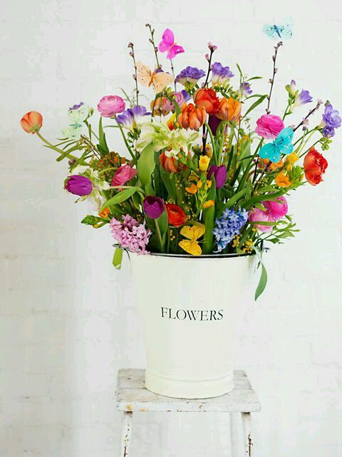 Simply Lovely | Flowers❣❣ | Pinterest | Flowers, Beautiful flowers ...