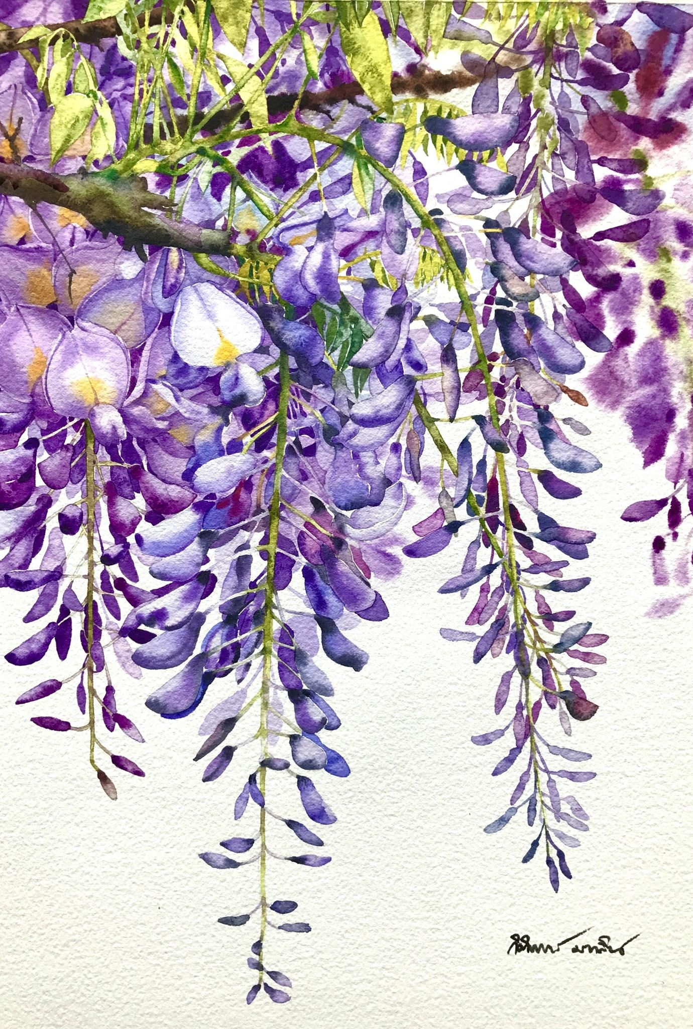 Kitipong Maksin Wisteria Flowers 1380x2048 Flower Art Vintage Flowers Wallpaper Floral Painting