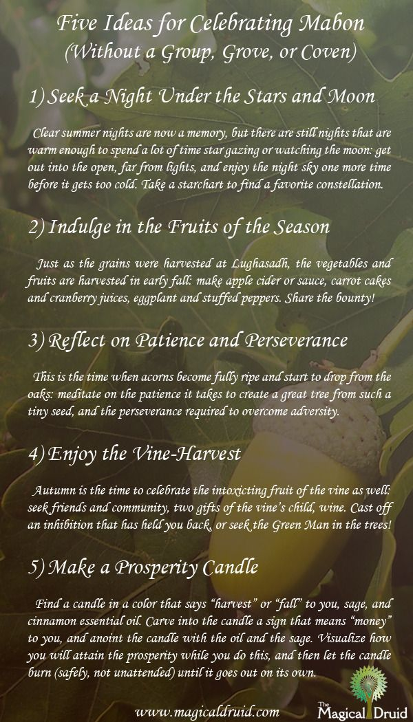 From The Magical Druid, things for people to do to celebrate the Autumnal Equinox even if they don't have a local group to work with on the night. #autumnalequinox