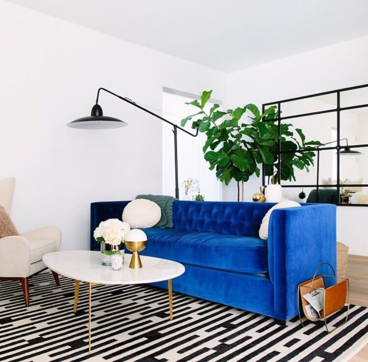 Leather Sofa Photo of The Joneses LA Los Angeles CA United States Beautiful Blue