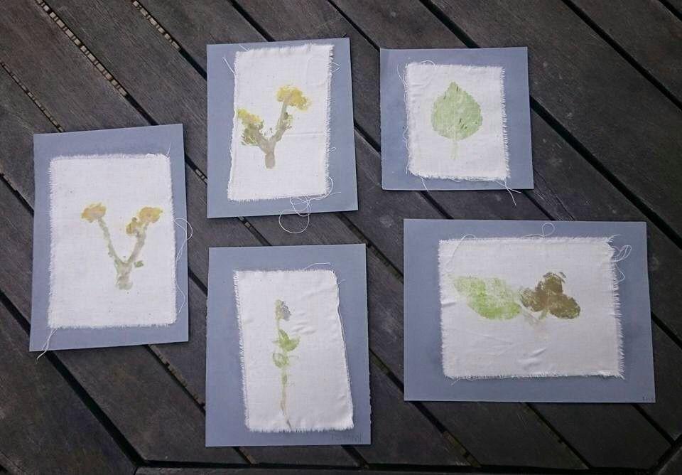 Kankaanpalan alle laitetaan kasvi ja sitten naputellaan vasaran kanssa kangasta kasvin kohdalta, kunnes väri irtoaa.