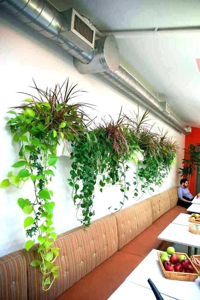 Image Result For Large Wall Hanging Planters