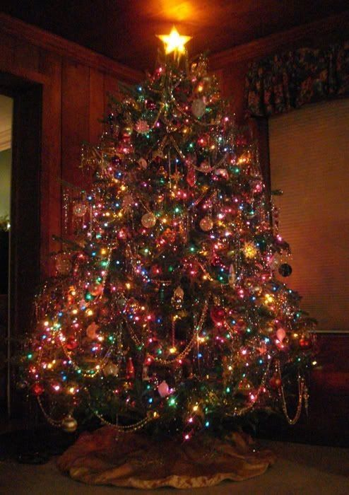 Christmas Tree With Multicolored Lights