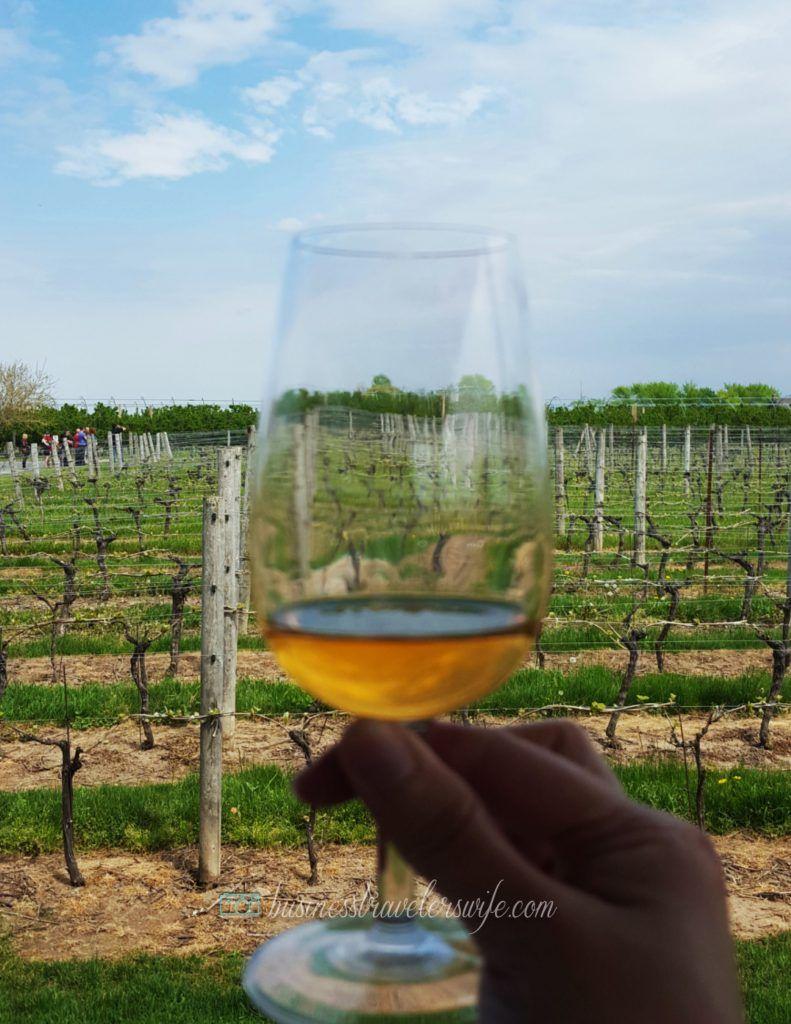 Appreciating Wine Winery Tour at NiagaraontheLake